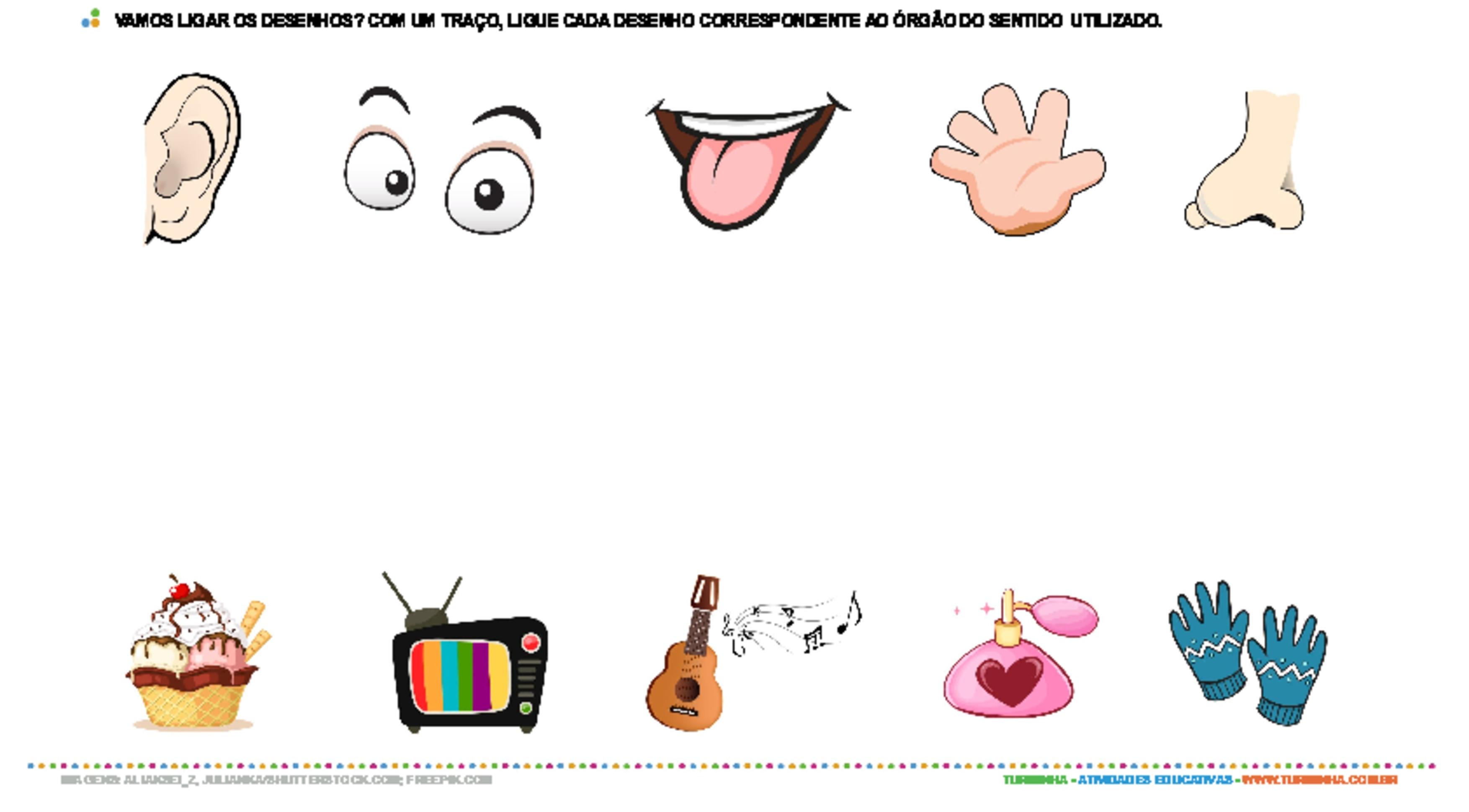 Órgãos dos sentidos - atividade educativa para Pré-Escola (4 e 5 anos)