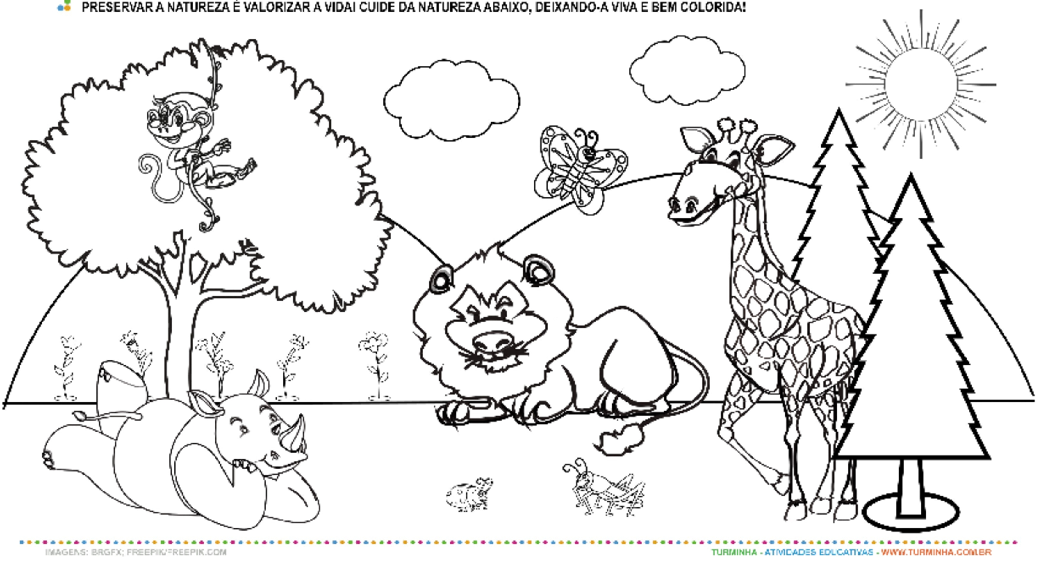 Colorindo a Natureza - atividade educativa para Pré-Escola (4 e 5 anos)